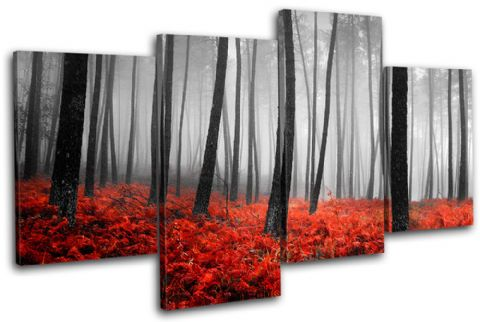 Stunning Forest Landscapes - 13-0775(00B)-MP04-LO